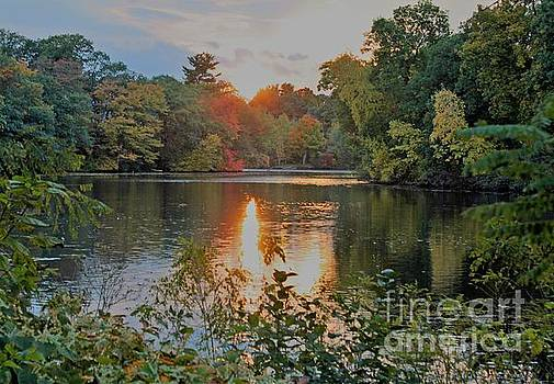 Charles River Sunset by Rita Brown
