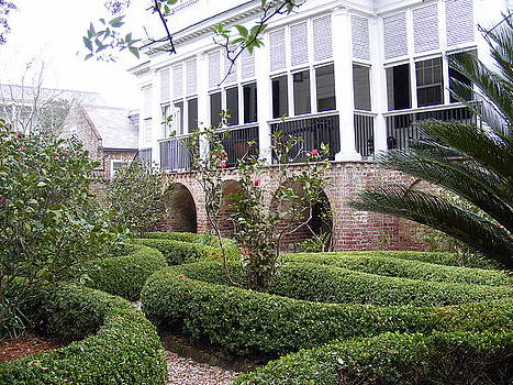 Charleston Garden South Battery Street by Elena Tudor