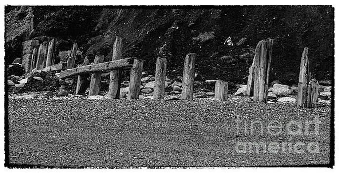 Chemical Beach #6 by John Cox