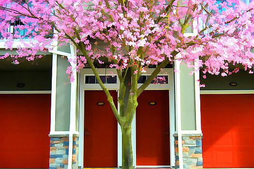 Cherry Doors by Noel Zia Lee