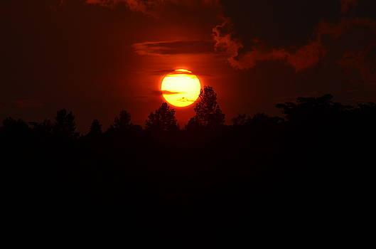 Maria Urso  - Cherry Mountain Sunrise