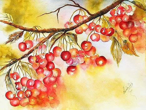 Cherry Pie by Lucia Del