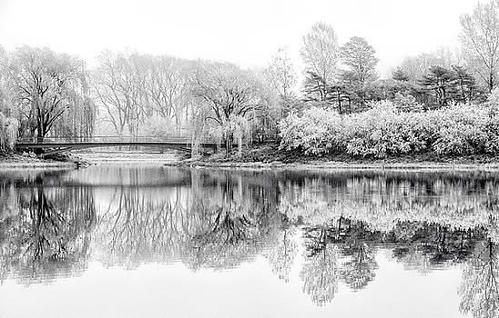 Julie Palencia - Chicago Botanic Garden in Black and White