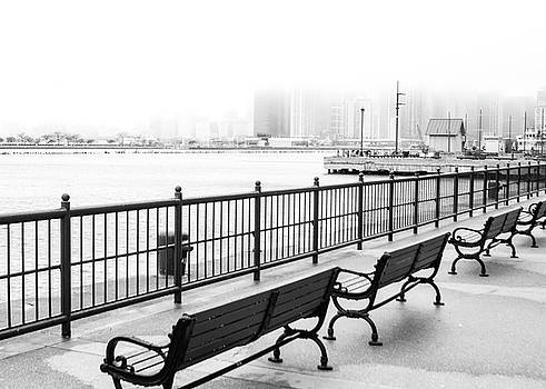 Chicago Navy Pier by Dawn Romine