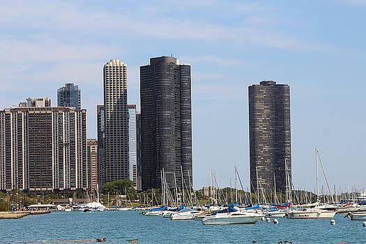 Chicago Skyline by Carolyn Ricks