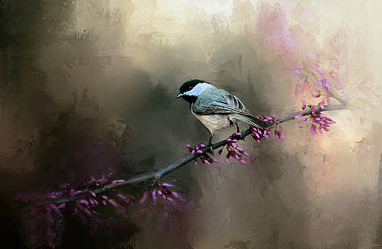 Jai Johnson - Chickadee In The Light