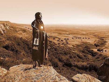 Chief Wolf Robe by IM Spadecaller