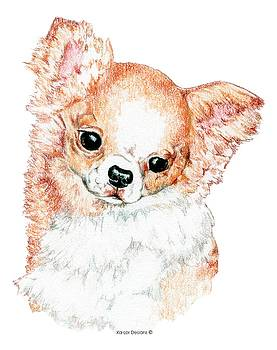 Chihuahua, Long Coat by Kathleen Sepulveda