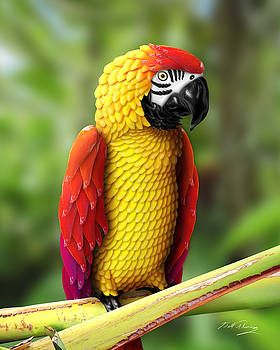 Chili Pepper Macaw by Bill Fleming