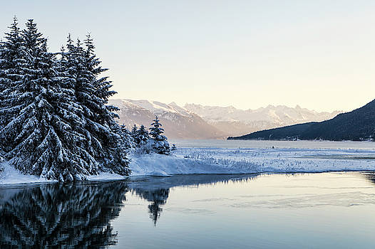 Chilkoot Inlet in Winter by Michele Cornelius