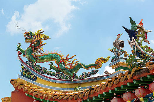 Chinese Dragon and Phoenix on Temple Roof by Jit Lim