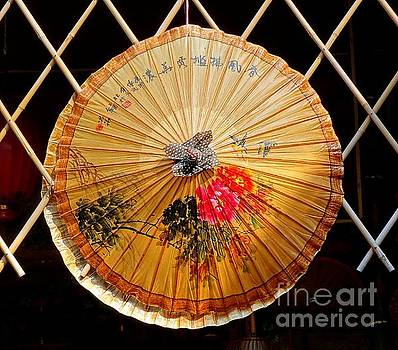 Chinese Hand-Painted Oil-Paper Umbrella by Yali Shi