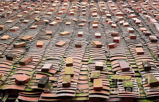 Chinese Traditional Roof Tiles by Yali Shi