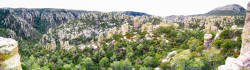 Chiricahua Mountains by Farol Tomson