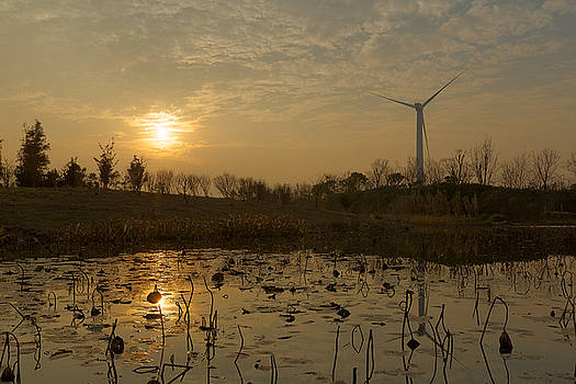 Chongming Windmill by Bun Lee