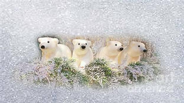 Christmas Bears by Geraldine DeBoer
