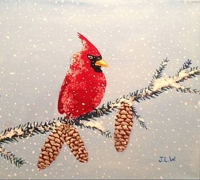 Christmas Cardinal by Justin Lee Williams