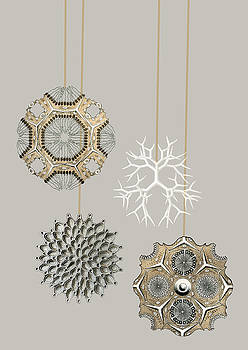 Christmas Tree Decorations Earnst Hackel by Suzanne Powers