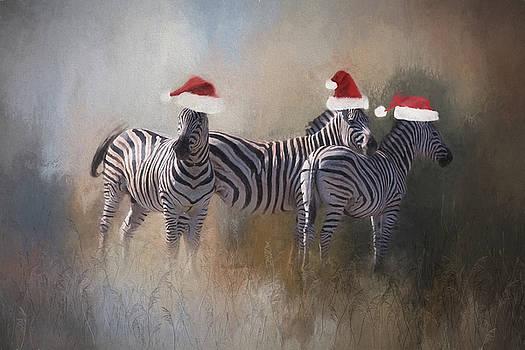 Christmas fun. by Lyn Darlington