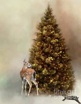 Christmas in the woods by Myrna Bradshaw