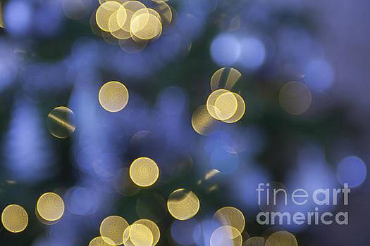Patricia Hofmeester - Christmas lights