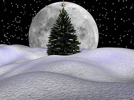 Christmas Moon by Michele Wilson