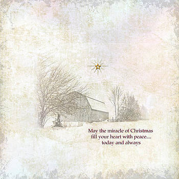 Christmas Peace and Quiet by Pamela Baker
