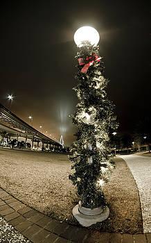 Christmas Season in Charleston by Andrew Crispi
