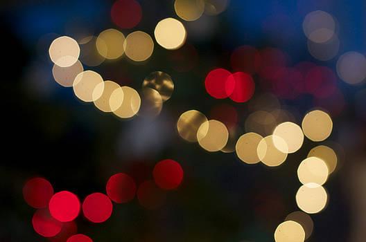 Christmas Tree by Brady Lane