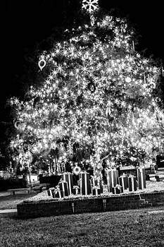 Christmas Tree Lights by Brent Paape