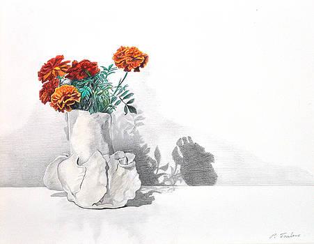 Phyllis Tarlow - Chrysanthemum Still Life