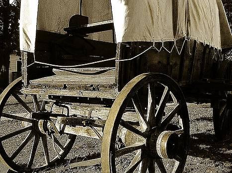 Scott Hovind - Chuck Wagon 1