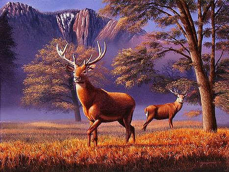 Ciervos Colorados by Sergio Gaspar