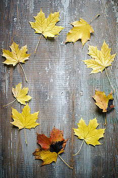 Circle Of Autumn Leaves On Weathered Wood by Di Kerpan