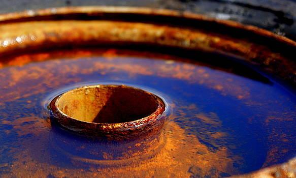 Circle of Rust by Jennifer  Diaz