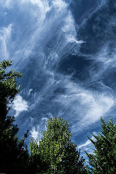 Cirrus Clouds In A Cobalt Blue Sky by Mick Anderson