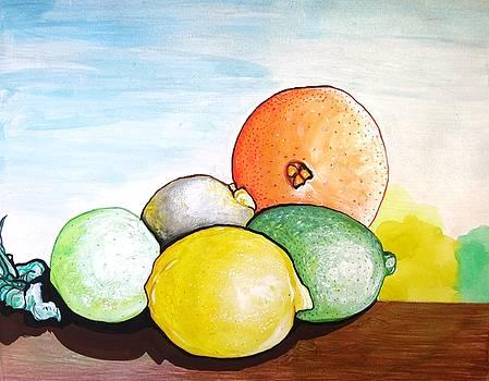 Citrus by MaryEllen Frazee