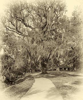 Steve Harrington - City Park New Orleans - Sepia