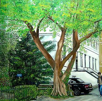 City Tree  by Nancy Van den Boom