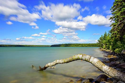 Clear Lake by Nebojsa Novakovic