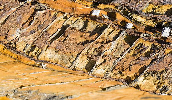 Steven Ralser - Cleavage in Rocks - Australia