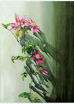 Clematis 1 by Lisa Prusinski