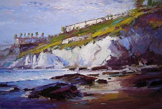 Cliffs at Pismo Beach XX by R W Goetting