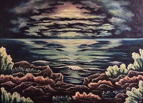 Cliffside by Cheryl Pettigrew