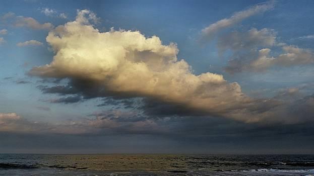 Cloud, 2015 by Wayne Higgs