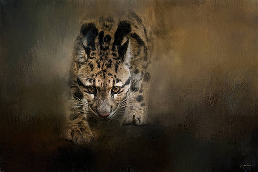Jai Johnson - Clouded Leopard On The Hunt - Painting
