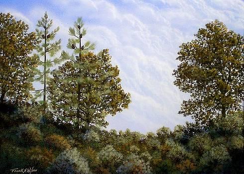 Frank Wilson - Clouds In Foothills