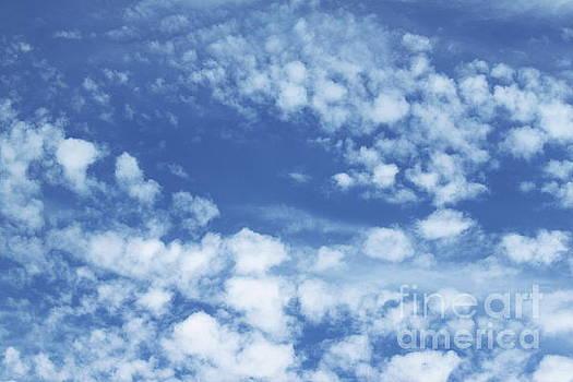 Cloudy Sky by Henrik Lehnerer