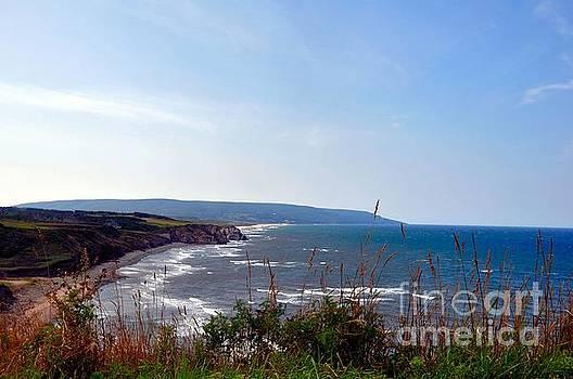 Coastal Cape Breton  by Elaine Manley