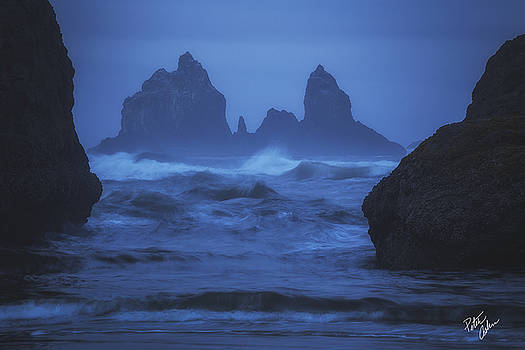 Coastal Castle by Peter Coskun